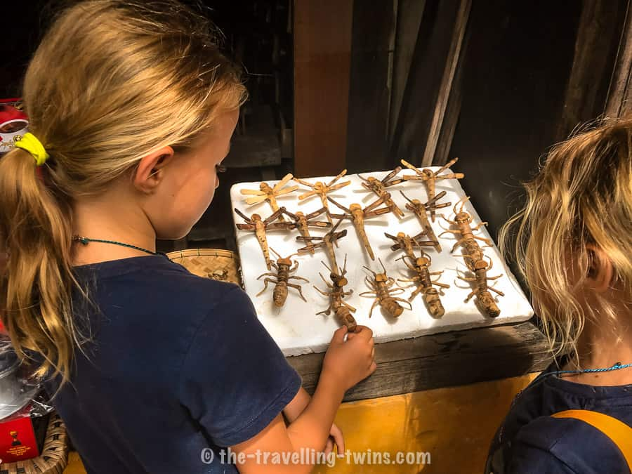girls souvenir shopping and looking at the dragon flies in ho chi minh city. these dragon flies makes perfect easily find gift  ling product items
