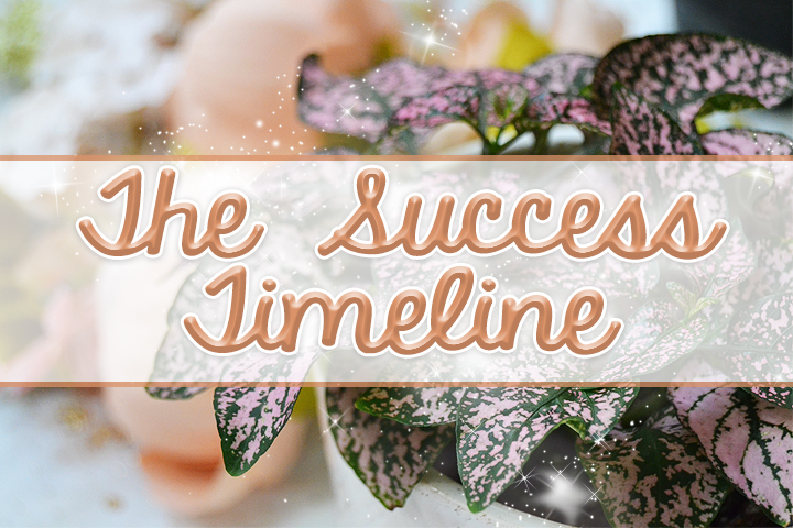 The Success Timeline