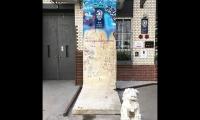 """<h5>Rudi-Dutschke-Straße</h5><p>Rudi-Dutschke-Straße <strong>Restaurant Tim Raue</strong> © <a href=""""https://www.instagram.com/p/BiEuAsLBM9l"""" target=""""_blank"""">Alina/Instagram</a><br>Datum der Aufnahme: 2018                                                   </p>"""