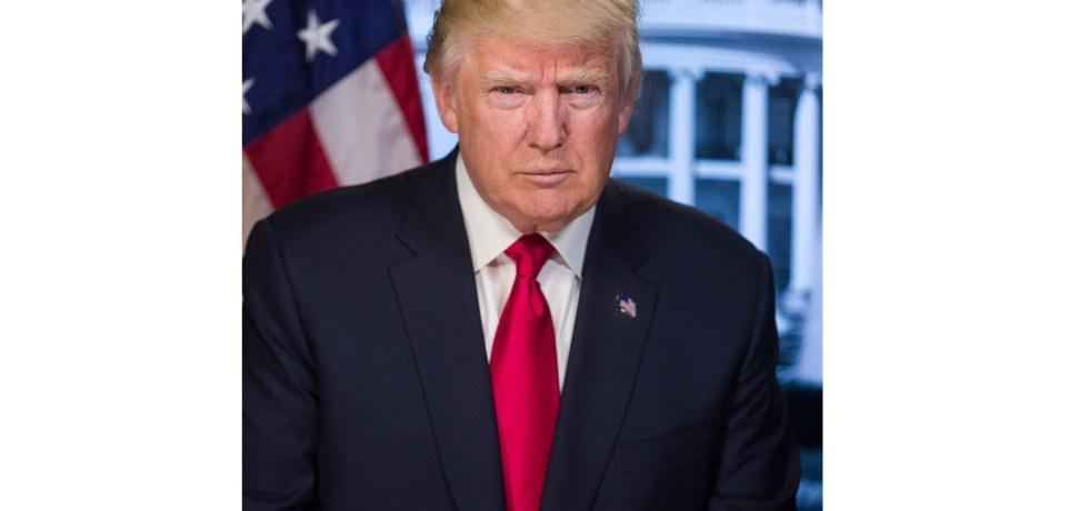 Buch Bolton Trump