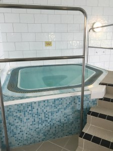 The Wiltshire - leisure facilities, hot tub
