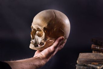 Image of a hand holding a skull. This is a replication of Hamlet's soliloquy from Act 5, Scene 1 of The Tragedy of Hamlet.