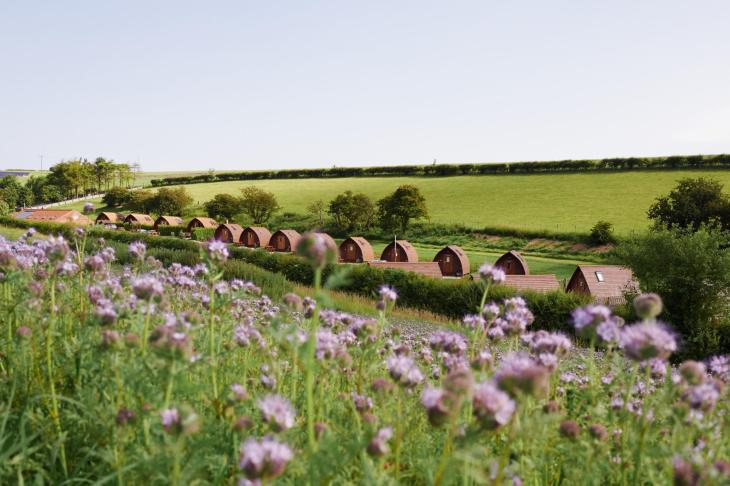 Humble Bee Farm