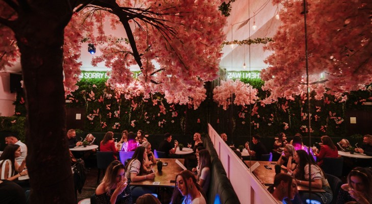 The Pretty-In-Pink Cocktail Bar Serving Pornstar Martini Trees Near Hull