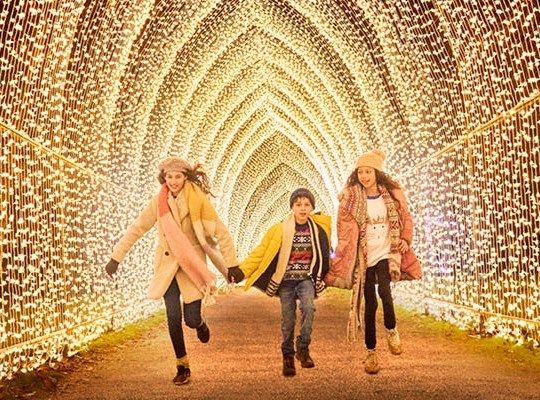 Explore A Magical Illuminated Trail This Christmas With Giant Baubles And Trees