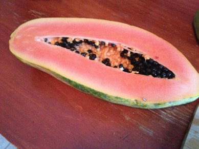 Payaya is such a great fruit