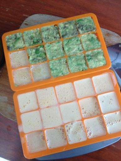 prep for freezing avocado and citrus cubes for smooties