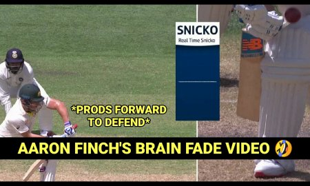 VIRAL VIDEO: Watch Aaron Finch commits a Massive BRAIN FADE