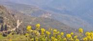 Delphi, Itlay
