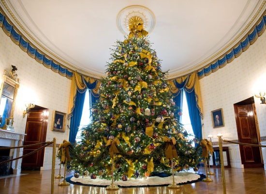 The official White House Christmas tree is displayed in the Blue Room of the White House during a press tour of the holiday decorations