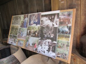 Living History Site-Effingham County Georgia