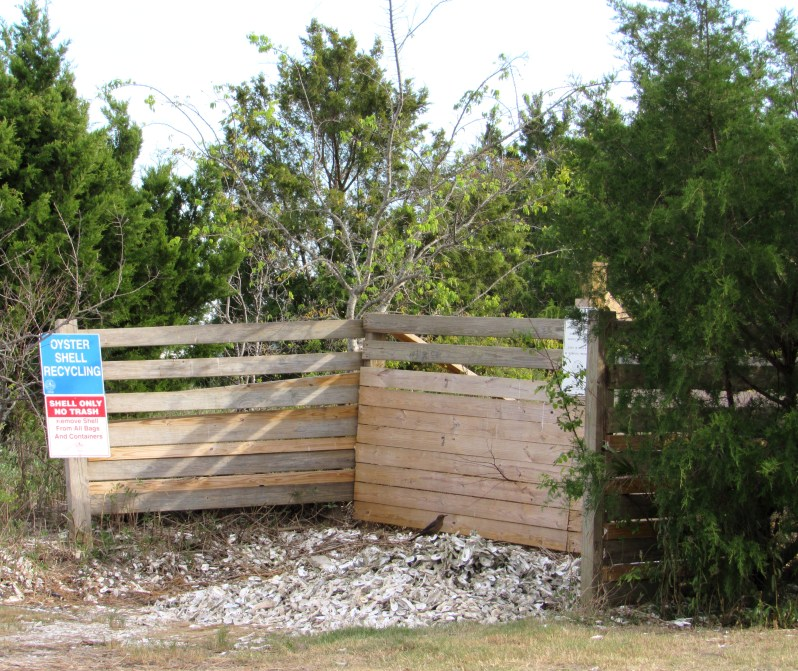 Oyster shell recycling