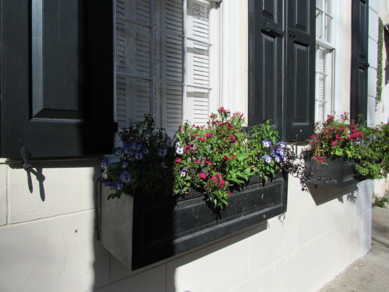 Window flower baskets