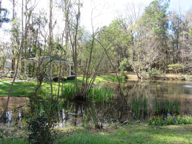 Pond and Gazebo