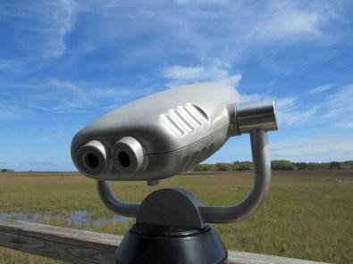 Scenic Viewer