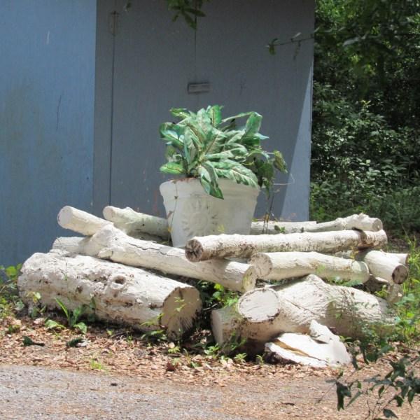 White logs
