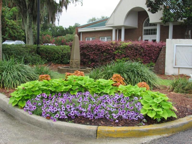 Town center flower garden