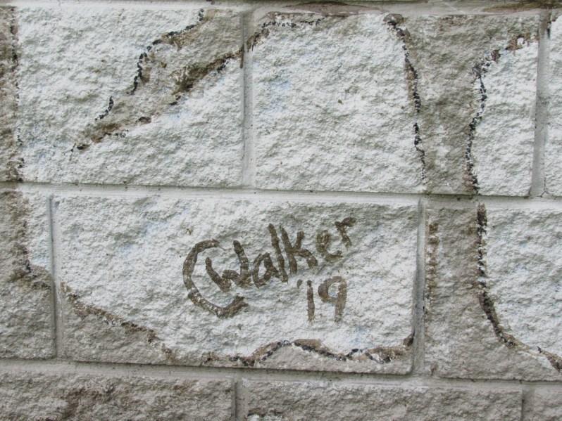 C Walker Artist
