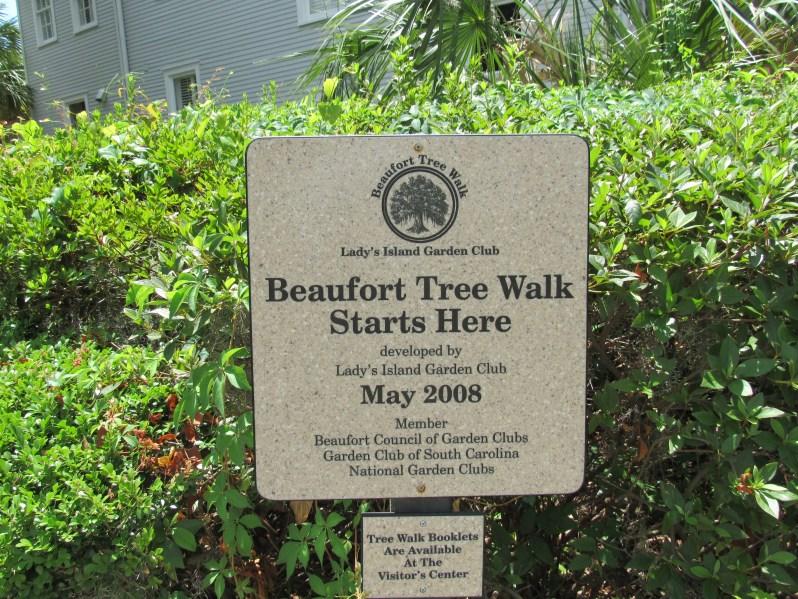 Beaufort Tree Walk