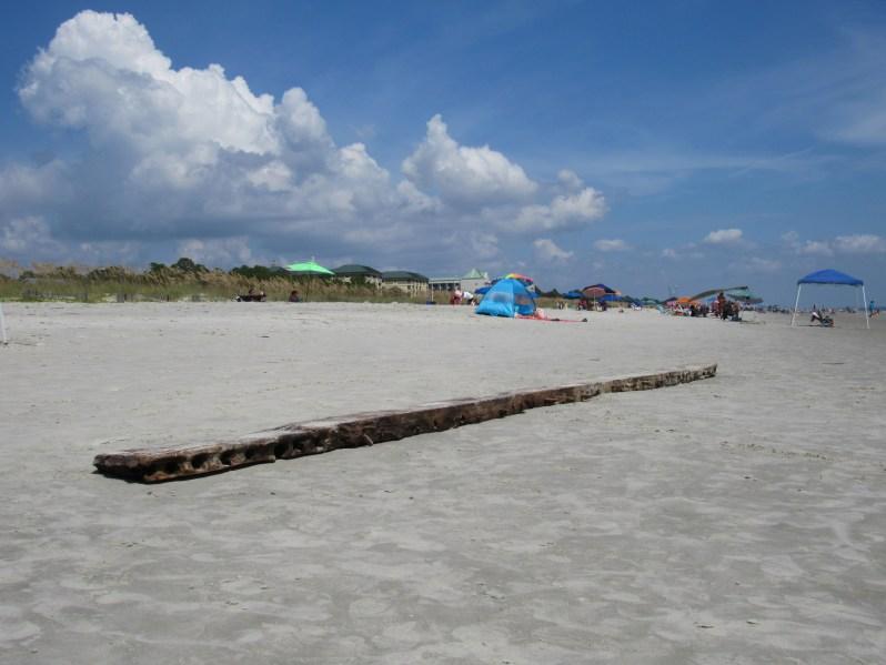 Wood beam washed ashore