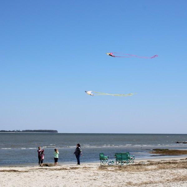 Kite flying at Fish Haul