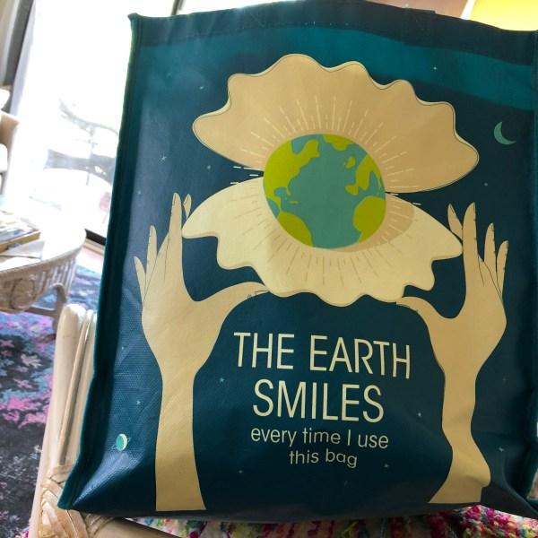 Re-usable grocery bag