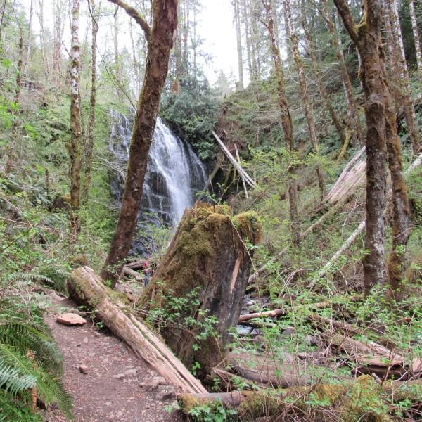 University Falls Trail Oregon