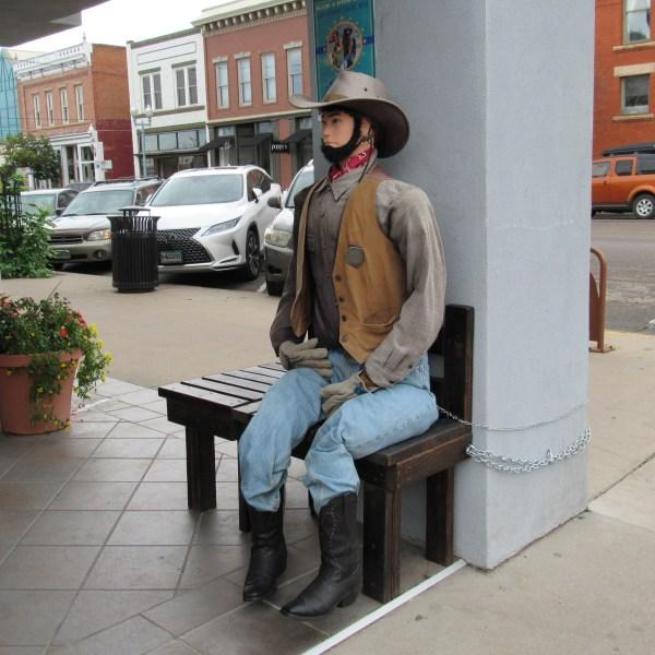 Cowboy in Laramie