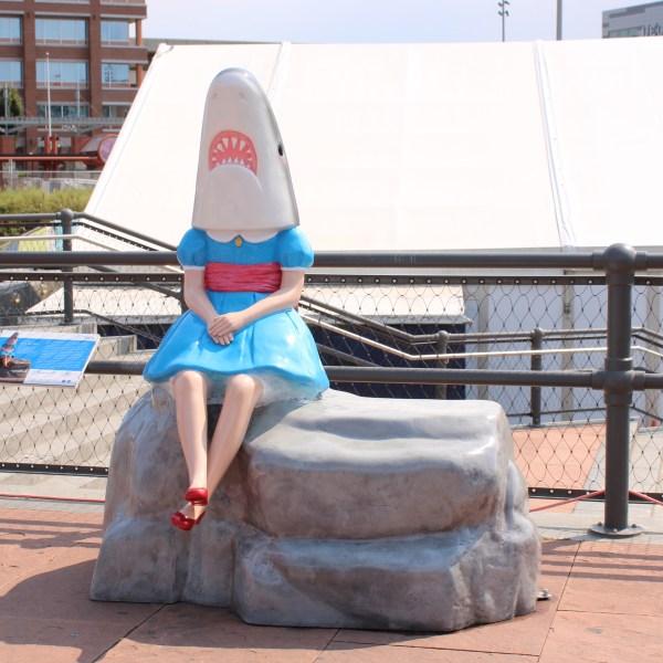 Shark Girl 2013