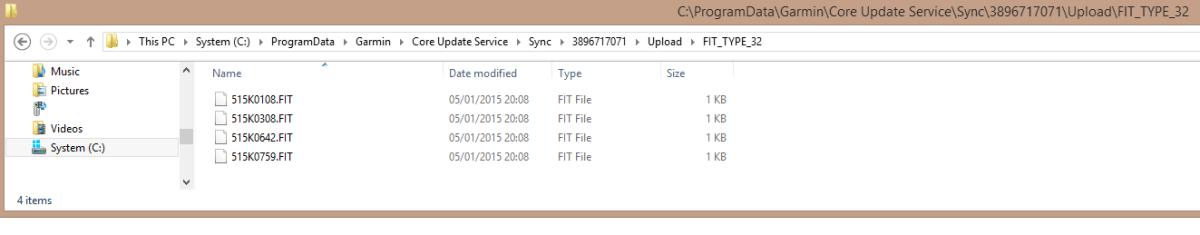 Garmin Express Cache Storage for 920XT