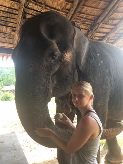 Kanchanaburi, Elephant World