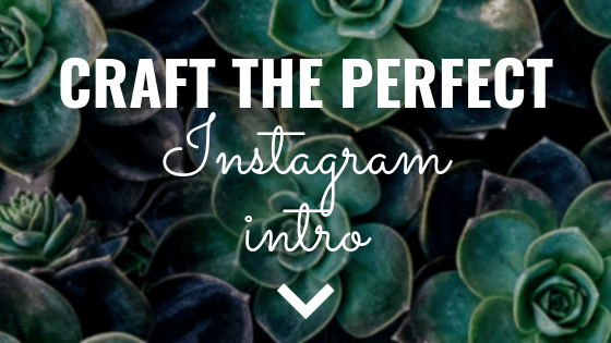 Craft the Perfect Instagram Intro