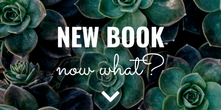 New book, now what?