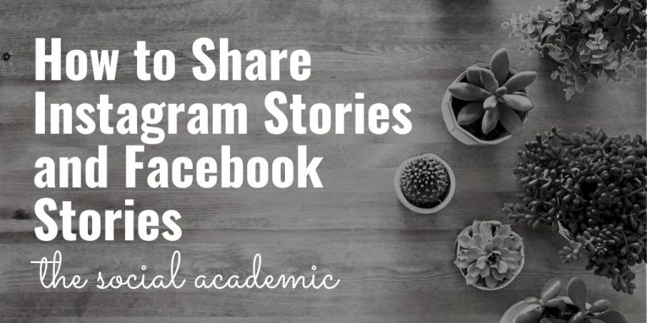 How to Share Instagram Stories and Facebook Stories on The Social Academic blog