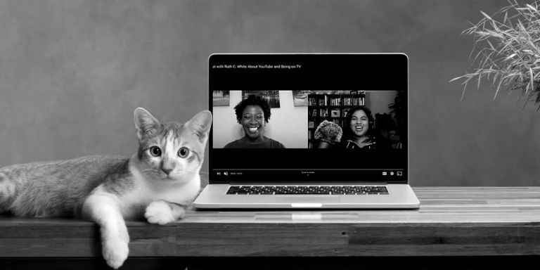 Cat lying next to laptop with The Social Academic YouTube channel with Jennifer van Alstyne