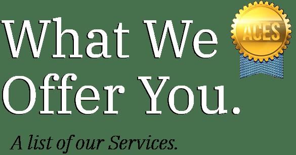 https://i1.wp.com/theacegroupinc.com/wp-content/uploads/2021/07/ecommerce-service-section-text.png?fit=585%2C306