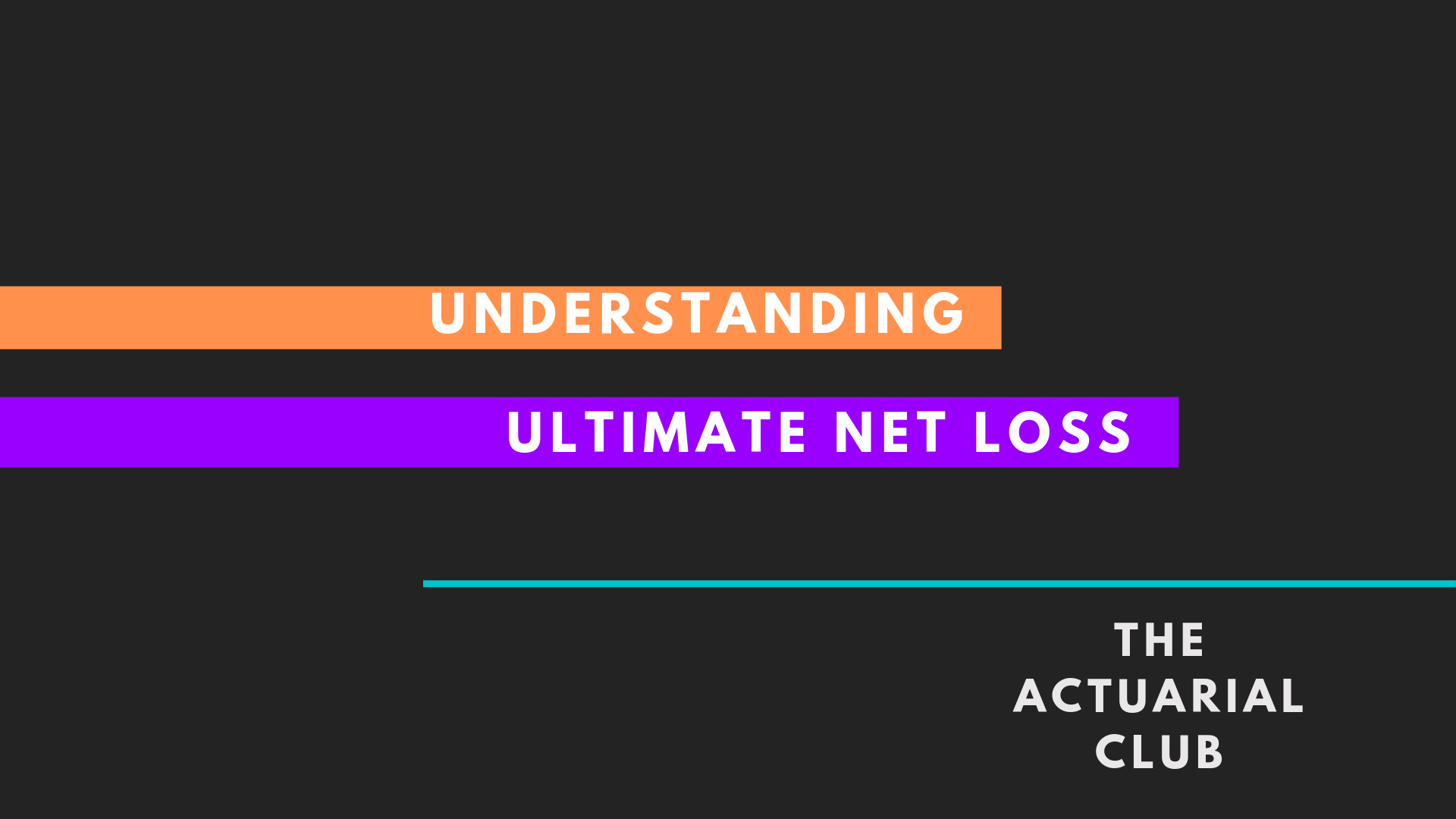 Ultimate Net Loss