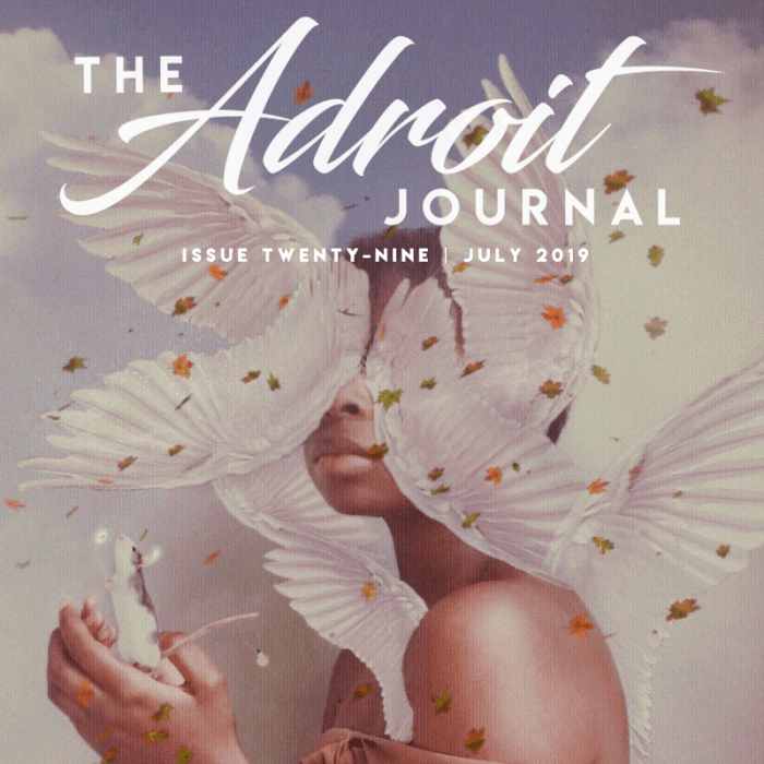 the adroit journal 29