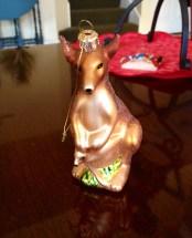 Kangaroos or, Kanga and Roo ;)