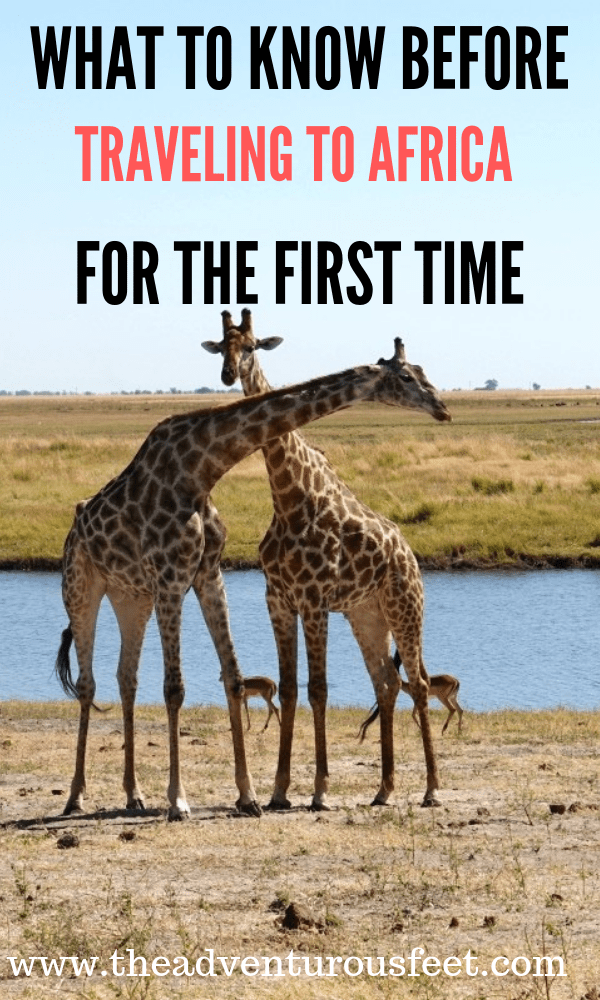 Traveling to Africa for the first time? Here is everything you need to know. #Africa #Africatips #travelingtoAfrica