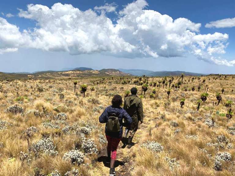 The ultimate guide to climbing Mount Elgon in Uganda