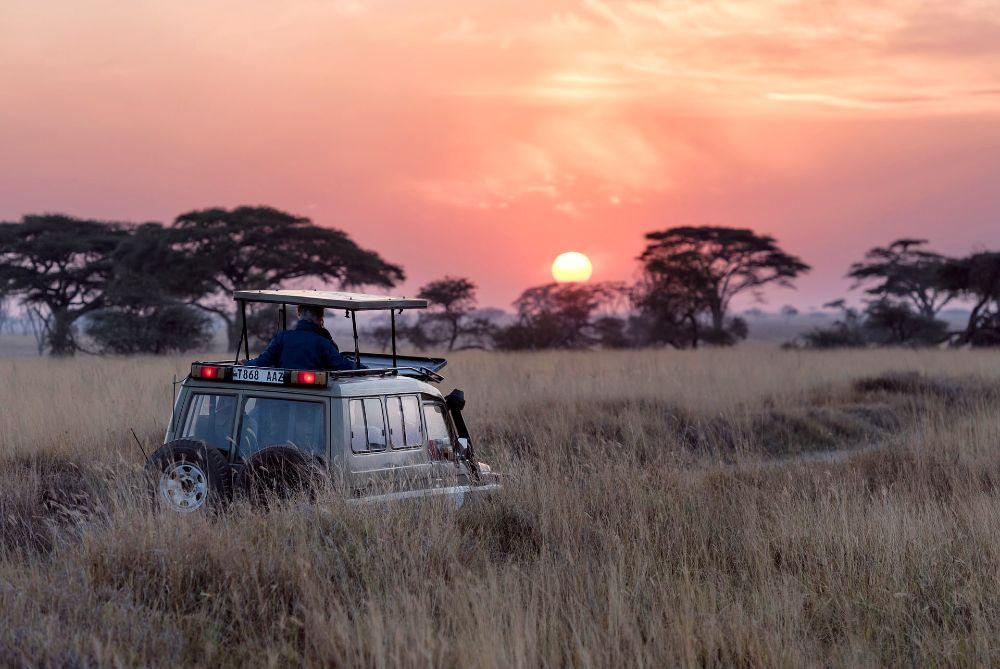 first time safari in Africa