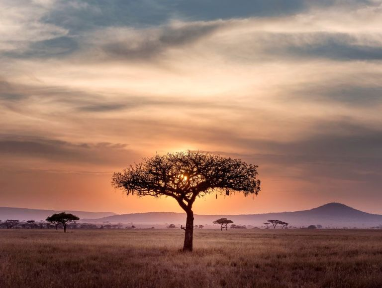 13 Rookie Mistakes to avoid in Africa + how to avoid them