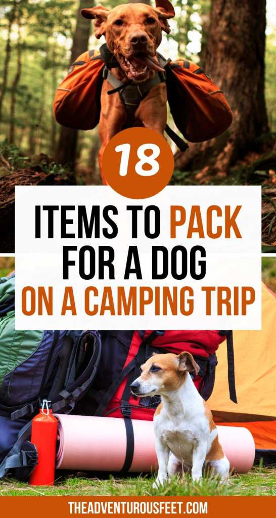 Planning to go camping with a dog? Here are the essential dog camping gear not to leave behind.| Camping gear for  dogs| best dog camping gear| list of the best dog camping gear| dog camping gear ideas| dog camping accessories| dog accessories for camping| camping equipment for dogs| camping essentials for dogs| essentials for camping with dogs| tips for camping with dogs| what to take camping for dogs| dog camping essentials| dog camping checklist| dog essentials for camping