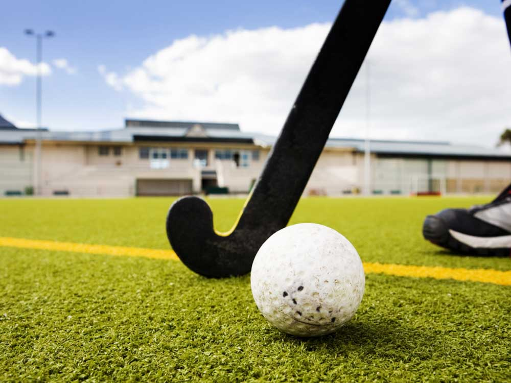 Hockey is one of the famous things in India