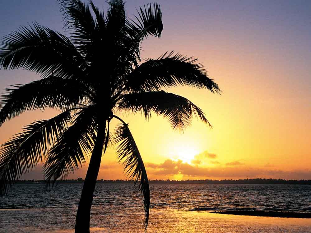 Short Sunset insta Captions & Quotes