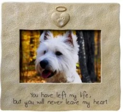 How to Cope With Your Pet's Death - A Veterinarian's Help
