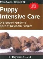 How to Help a Pregnant Dog Give Birth to Puppies