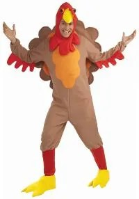 turkey costume for thanksgiving