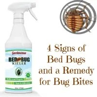 remedy bug bites signs of bed bugs